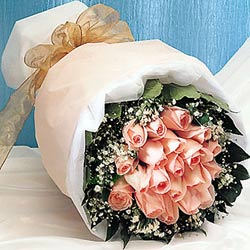 石夏兰梦回少年,*19朵粉玫鲜花图片展示。