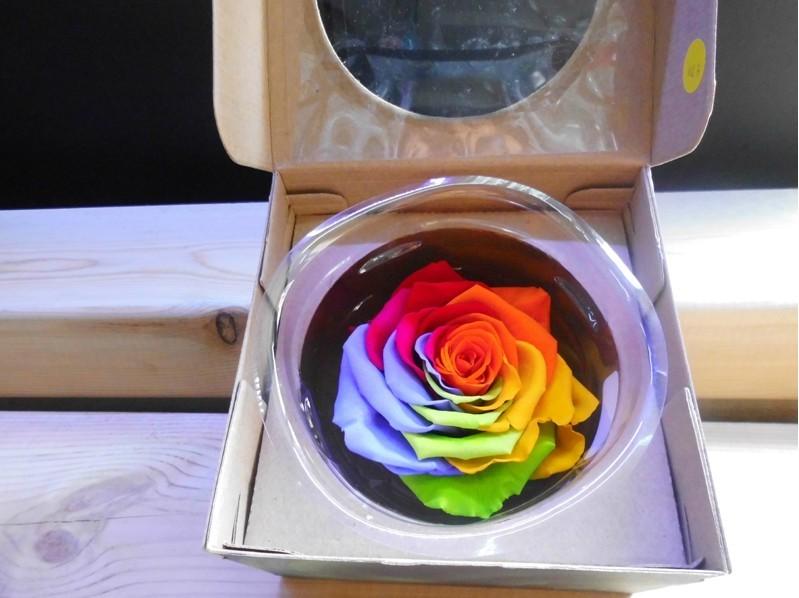 石夏兰爱神系列情人节玫瑰花礼盒鲜花图片展示。