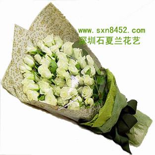 石夏兰【无悔的爱】*50朵白玫鲜花图片展示。