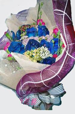 石夏兰9朵蓝色妖姬玫瑰鲜花图片展示。