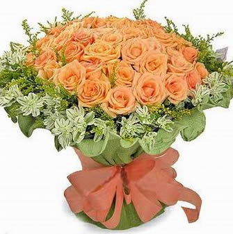 石夏兰66朵枝,罗马假日公主玫瑰,深圳市,福田鲜花,配送,巴登街花店,免邮,全国鲜花,特价鲜花鲜花图片展示。