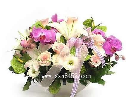 石夏兰【金榜题名】,白领鲜花图片展示