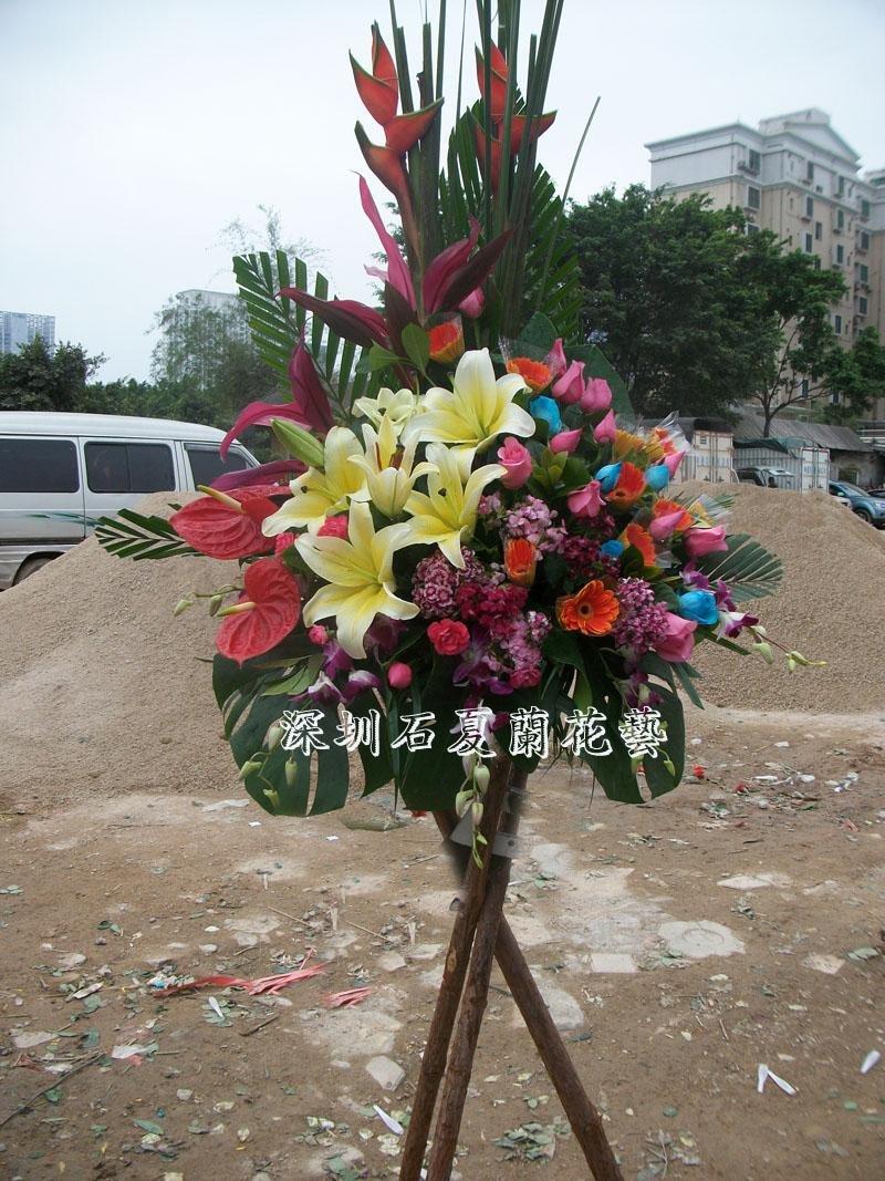 石夏兰原木,三角架,高档港式商务开业花蓝鲜花图片展示。