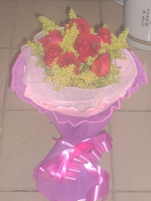 石夏兰6朵红玫瑰鲜花图片展示。