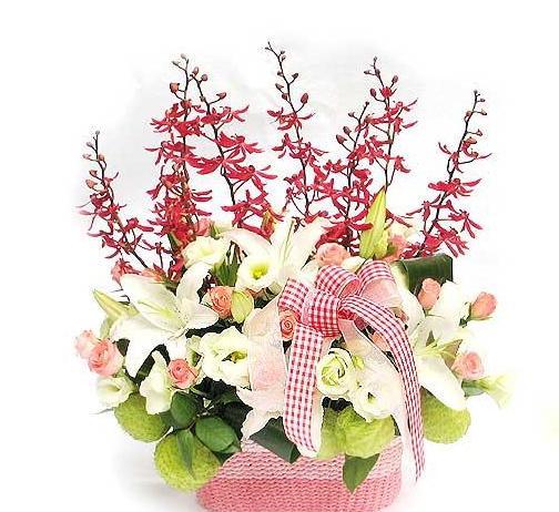 石夏兰【花萼相辉】办公室鲜花图片展示。