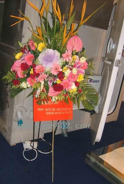 石夏兰演唱会,西式花篮,叶牡丹,黄金鸟,会展花篮鲜花图片展示。
