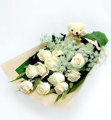 石夏兰11朵白玫瑰鲜花图片展示。