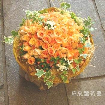 石夏兰123朵香槟玫鲜花图片展示。