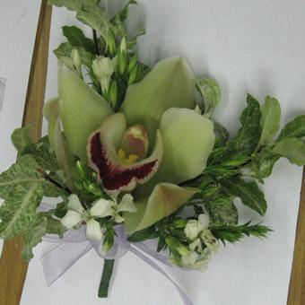 石夏兰兰花胸花鲜花图片展示。