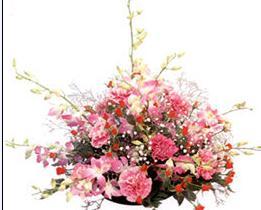 石夏兰老人生日花篮鲜花图片展示。