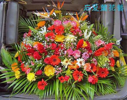 石夏兰台面花,会议桌花,会议台面花,接待客房鲜花鲜花图片展示。