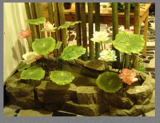 石夏兰小品鲜花图片展示