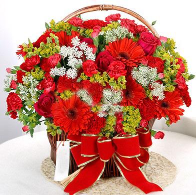 石夏兰手提送礼花篮鲜花图片展示