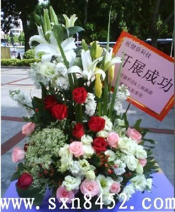石夏兰开展成功,手提,展会祝贺花篮,送礼花篮,竹子林附近花店鲜花图片展示。
