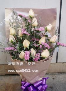 石夏兰【钟情】12朵香槟玫瑰鲜花图片展示。