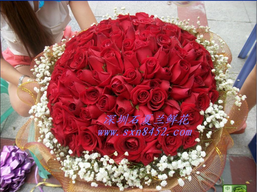 石夏兰情人节推荐花,鲜花,深圳花店,99红玫瑰,福田中心区花店,送花,特价,情人花事鲜花图片展示