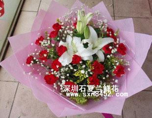 石夏兰19枝康乃馨鲜花图片展示。