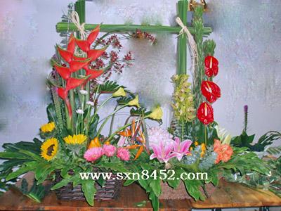 石夏兰【渊源共生,和谐共融】,双连花蓝鲜花图片展示。