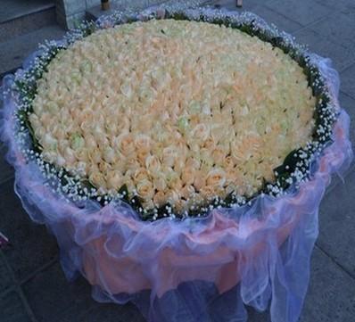 本店新上架鲜花作品,999朵香槟玫 鲜花图片展示,点击订购。