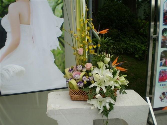 石夏兰手提花篮鲜花图片展示。