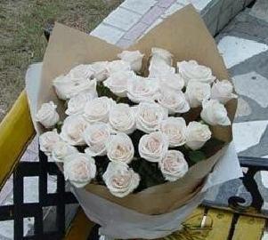 石夏兰33朵白色玫瑰鲜花图片展示。