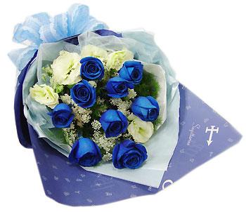 石夏兰9枝蓝色妖姬鲜花图片展示。