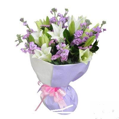 石夏兰紫罗兰与百合鲜花图片展示。